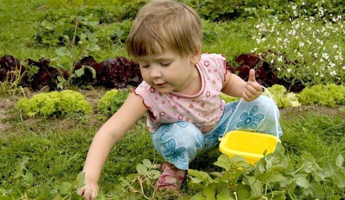 ☛ ⌛ Загадки про сад для детей ☘