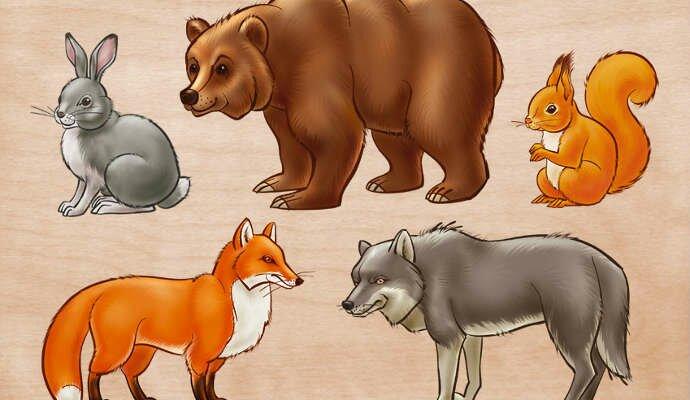 Загадки про диких животных для детей